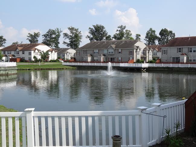 side yard overlooking pond